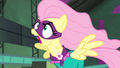 Fluttershy losing her temper S4E06.png