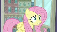 Fluttershy overwhelmed by information S8E4