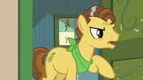 "Grand Pear ""the Pears are moving!"" S7E13"