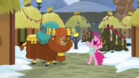 Pinkie appears before Prince Rutherford MLPBGE