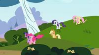 Rainbow Dash's friends S2E07