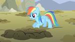 Rainbow Dash take a peek S1E19