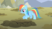 Rainbow Dash take a peek S1E19