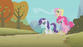 Rarity, Pinkie & Fluttershy S1E13.png