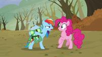 S05E05 Rainbow krzyczy na Pinkie