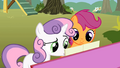 Sweetie Belle reading Scootaloo's lyrics S01E18.png