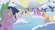 Twilight mirando al equipo de los animales