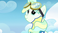 Vapor Trail watching Rainbow Dash closely S6E24