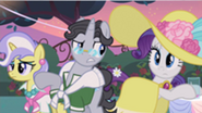 201px-Rarity wearing what S2E9
