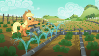 Applejack waters one row of vegetables S6E10
