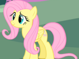 Fluttershy/Gallery/Overview