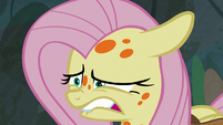 Fluttershy about to sneeze S7E20