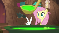 Fluttershy and Angel look at potion S9E18