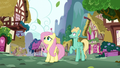 Fluttershy and Zephyr look up at Rainbow S6E11.png
