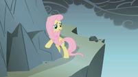 Fluttershy hugs a rock S1E07