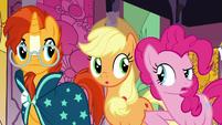 Pinkie Pie -weren't you listening-- S7E25