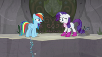 "Rainbow ""I wasn't leaving you behind"" S8E17"