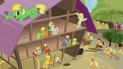 S03E08 Kucyki pracują razem