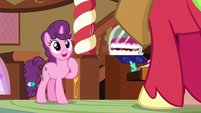 Sugar Belle happy to see Big McIntosh S8E10