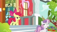 "Sweetie Belle ""the history of radishes"" S8E12"
