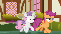 Sweetie and Scootaloo follow Apple Bloom S9E23