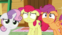 The Cutie Mark Crusaders worried S6E4