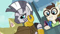 Zecora removes her hood S03E11.png