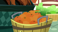 A tub of oranges S5E22