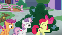 Apple Bloom -friendship with your best friends- S8E12