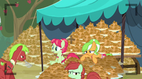 Apple Family lot of fritters S3E8