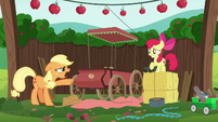 Applejack --I thought we covered this!-- S6E14