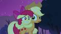 Applejack notices Apple Bloom on her back S3E06.png