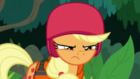 Applejack scowling at Rainbow Dash S8E9