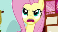 Fluttershy is angry S2E19