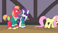 Fluttershy walking away from Rarity and Big Mac S4E14.png