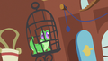 Gummy why am I here S3E13.png