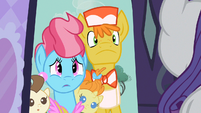 Mr. & Mrs. Cake perhaps Rarity S2E13