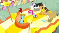 Pinkie Pie inside the party cannon S4E12