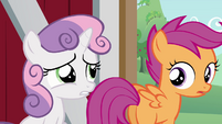 Sweetie Belle saying they should go to Applejack S3E4
