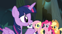 Twilight '...Radiant Shield of Rasdon!' S4E04