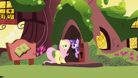 Twilight before slamming house door in Fluttershy's face S1E01