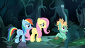 """Zephyr Breeze """"cozying up in my sleeping bag"""" S6E11.png"""