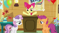 "Apple Bloom ""figure out how to get two more cutie marks"" S5E4.png"