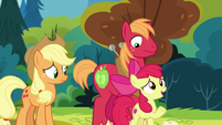 Apple Bloom -I ran into Grand Pear yesterday- S7E13