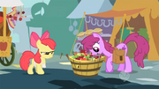 Apple Bloom Berrypunch S01E12