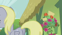 Derpy leaves S5E9