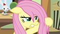 Fluttershy gives Zephyr an angry glare S6E11.png