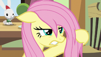 Fluttershy gives Zephyr an angry glare S6E11