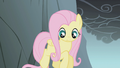 Fluttershy looks down while jumping a gap S1E07.png
