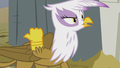 "Gilda ""Now you got Grampa Gruff started!"" S5E8.png"